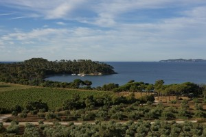 Winery Provence